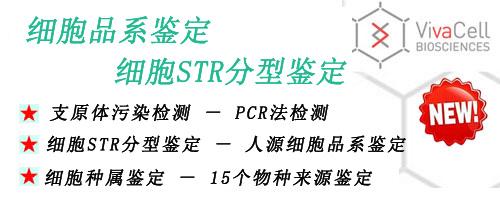 昆明泽浩代理bioind胎牛血清(04-001-1A)、RPMI-1640、DMEM培养基,STR分型,细胞品系鉴定,细胞种内污染,细胞STR鉴定
