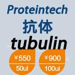 泽浩Proteintech内参tubulin家族α,β,γ亚型优质单克隆抗体特价优惠