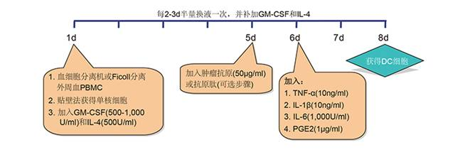 Animal Free(无动物成分)级别细胞因子 推荐用于细胞/基因/组织工程产品的生产(美国药典第1043章) DC(树突状细胞)制备  CIK(细胞因子诱导的杀伤细胞)制备  细胞治疗常用细胞因子(均为Animal Free级别)   更多产品信息及规格,请咨询: 泽浩公司:Promega /beckman/Peprotech /ebioscience /BI / Proteintech-云南总代理 电话:0871-65100545、65100597 企业QQ在线订货: 4008700545
